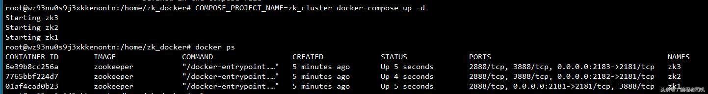 使用Docker搭建zookeeper集群- IT-Mamba - OSCHINA